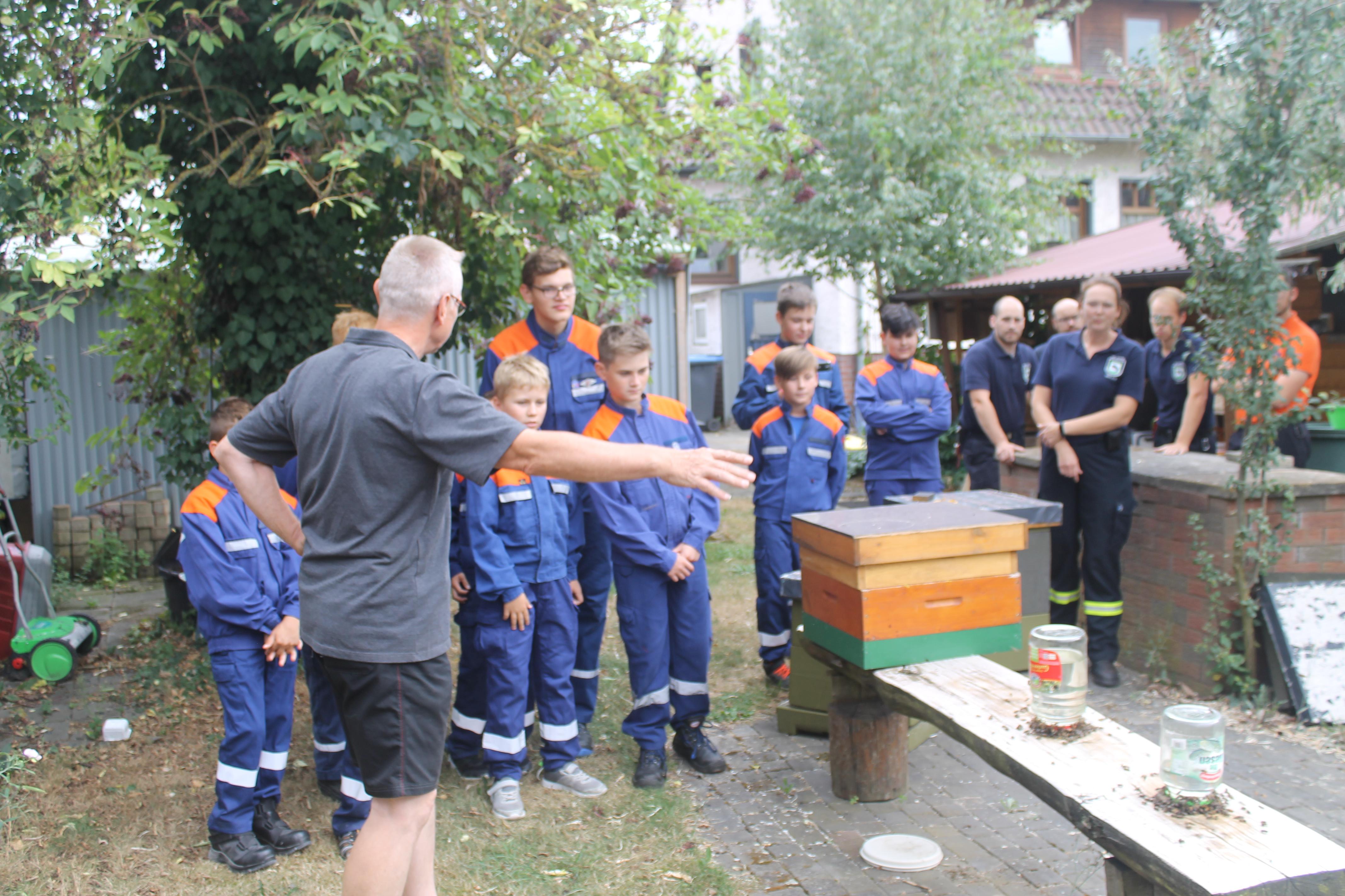 Besuch-beim-Stadtbienenbeauftragten